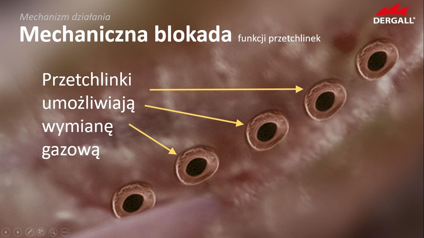 zwalczanie-ptaszynca-isotech-11